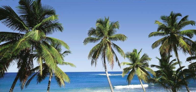 Playa Dorada ab 1145 € 6