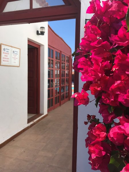 Castillo Beach Bungalows in Caleta de Fuste, Fuerteventura