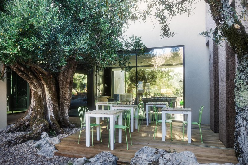 Cooking & Nature Emotional Hotel Lounge/Empfang