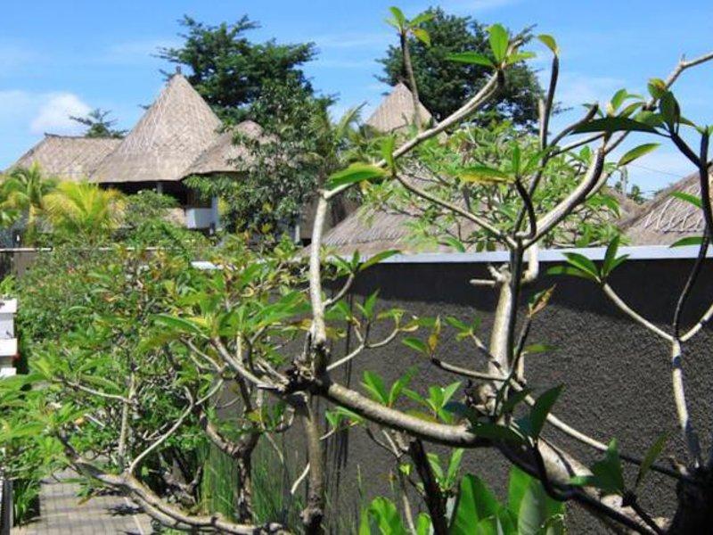 Abi Bali Villa Resort & Spa Landschaft
