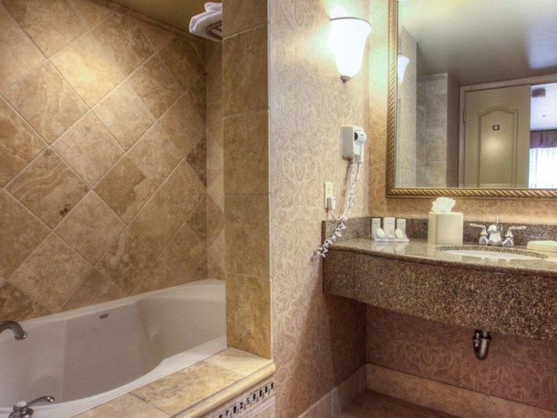 Hilton Garden Inn Boise Eagle Badezimmer