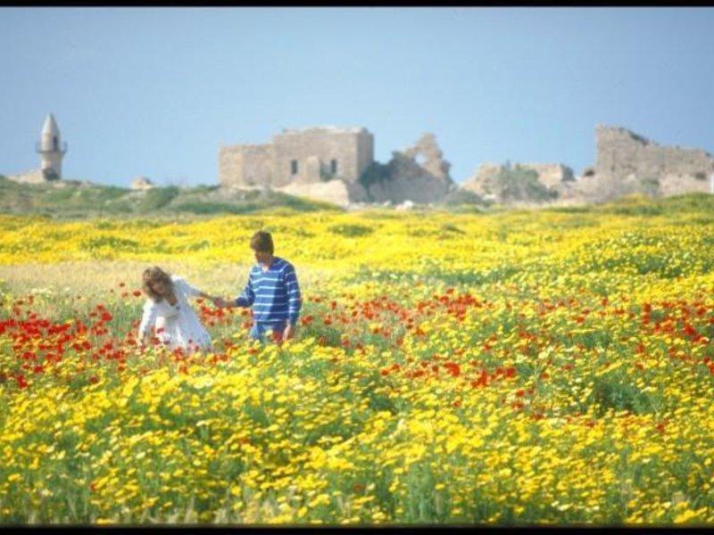 Dan Caesarea Landschaft