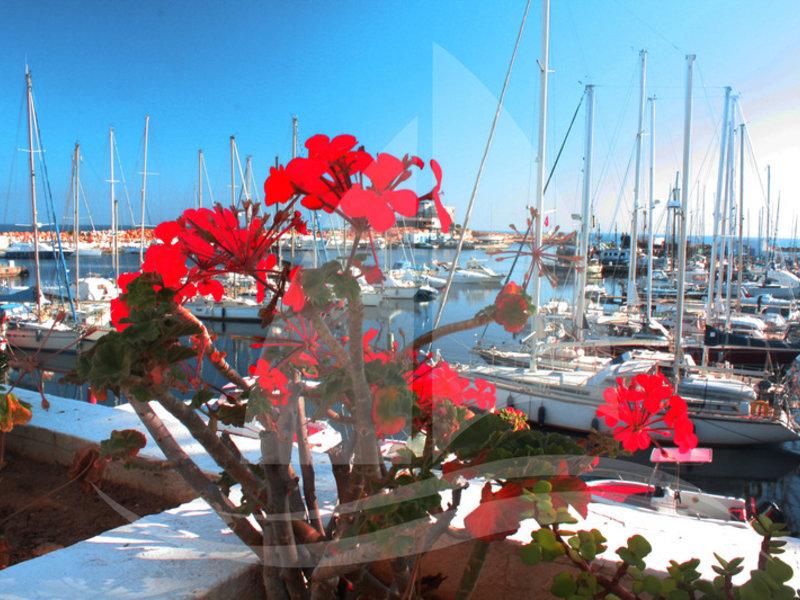 Marina Cap Monastir Sport und Freizeit
