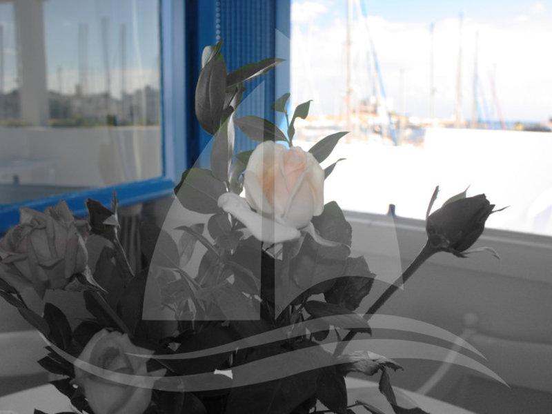 Marina Cap Monastir Wohnbeispiel