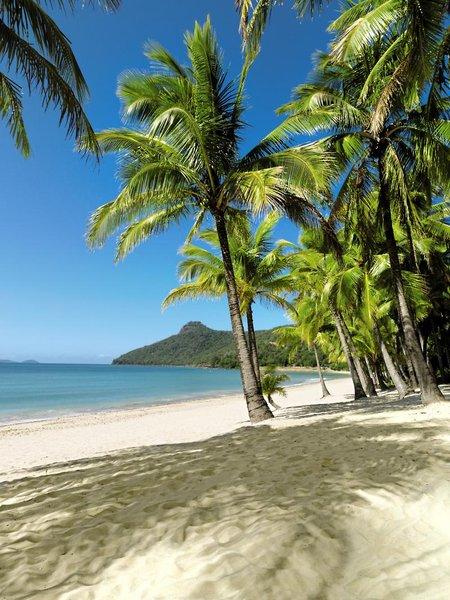 Hamilton Island Palm Bungalows Strand