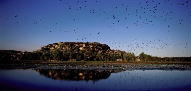 Davidson´s Arnhemland Safaris Landschaft