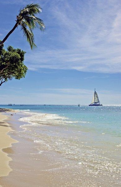 Treasure Beach Strand